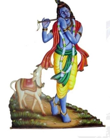 SMHD-Krishna With Calf USA & CANADA