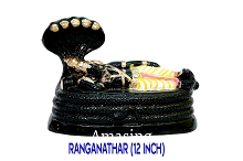 Ranganathar 12 inches USA & CANADA