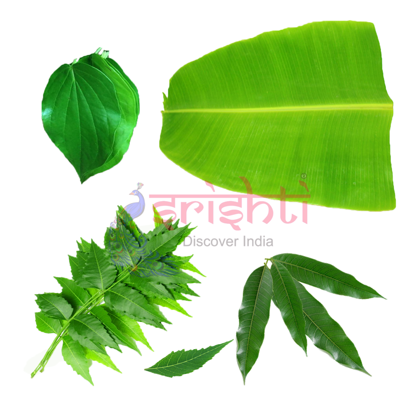 Speciality Leaves