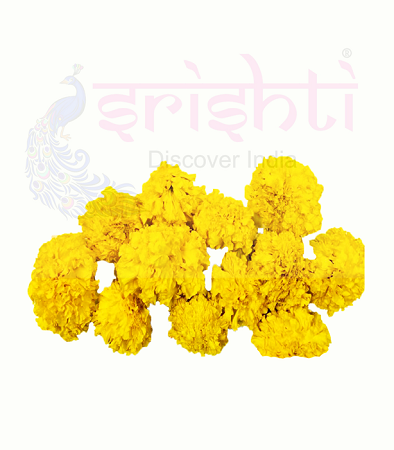 SRFU-Marigold Fresh (Yellow) USA & CANADA