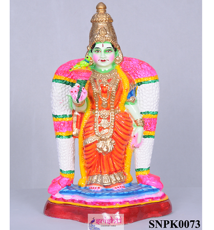 SNPD-Meenakshi-20 Inches  USA & CANADA